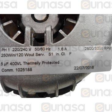 Motor Horno 0.12kW 230V 50/60Hz 2800/3200rpm
