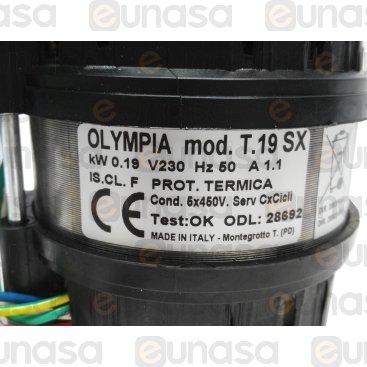Bomba Lavado 230V Op T.19 0.25HP