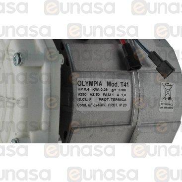 Wash Pump 230V 0.40HP LINEAR-CF